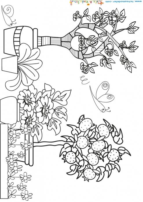 Coloriage Jardin – Teenzstore à Oloriage Potager A Imprimer
