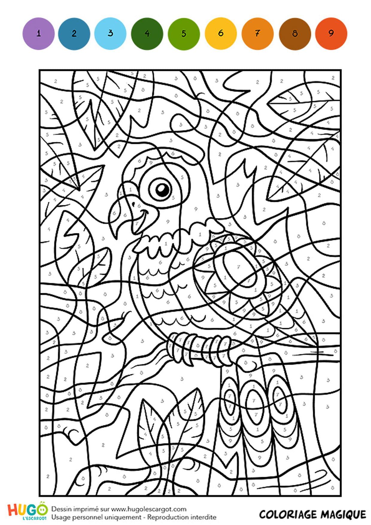 Coloriage Jungle Magique encequiconcerne Coloriage Magique Cm