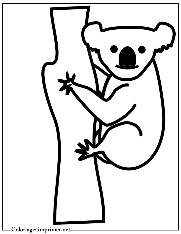 Coloriage Koala Sur Coloriage À Imprimer Du Net avec Coloriage Koala A Imprimer