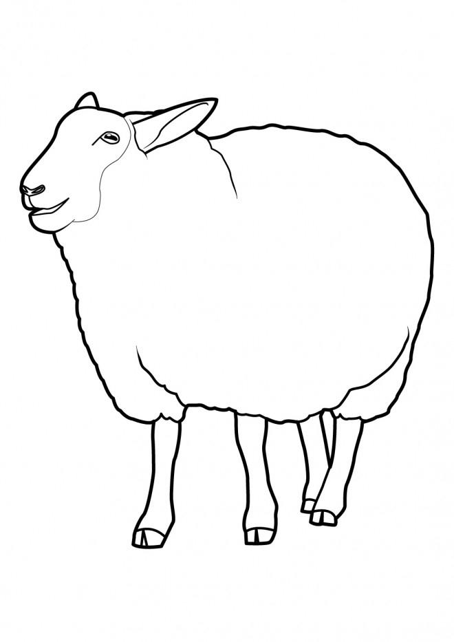 Coloriage Le Mouton Bêle Dessin Gratuit À Imprimer encequiconcerne Dessin Mouton Rigolo