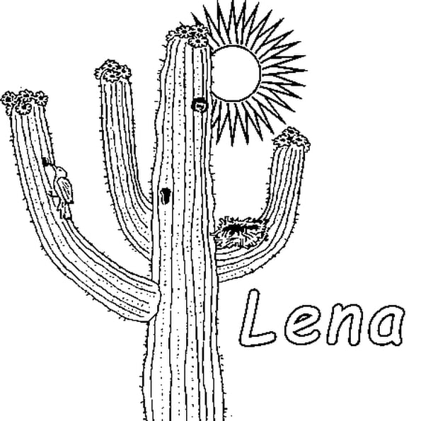 Coloriage Lena En Ligne Gratuit À Imprimer serapportantà Coloriage Cactus A Imprimer