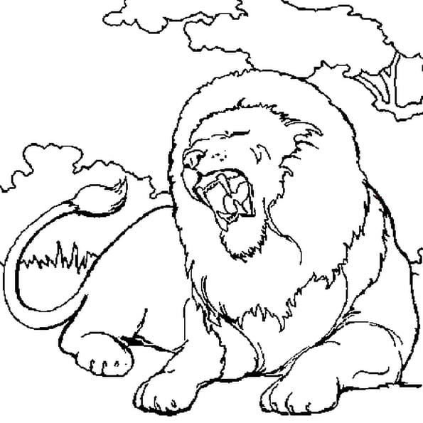 Coloriage Lion En Ligne Gratuit À Imprimer intérieur Coloriage Simba A Imprimer Gratuit
