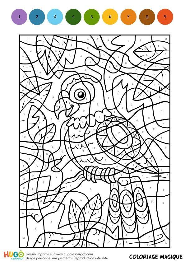 Coloriage Magique Cm1, Une Perruche Multicolore encequiconcerne Jeux De Dessin Gratuits
