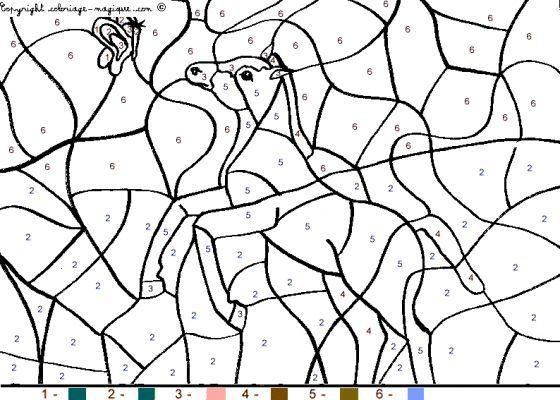 Coloriage Magique De Cheval | Kids Rugs, Home Pictures pour Coloriage Magique De Cheval