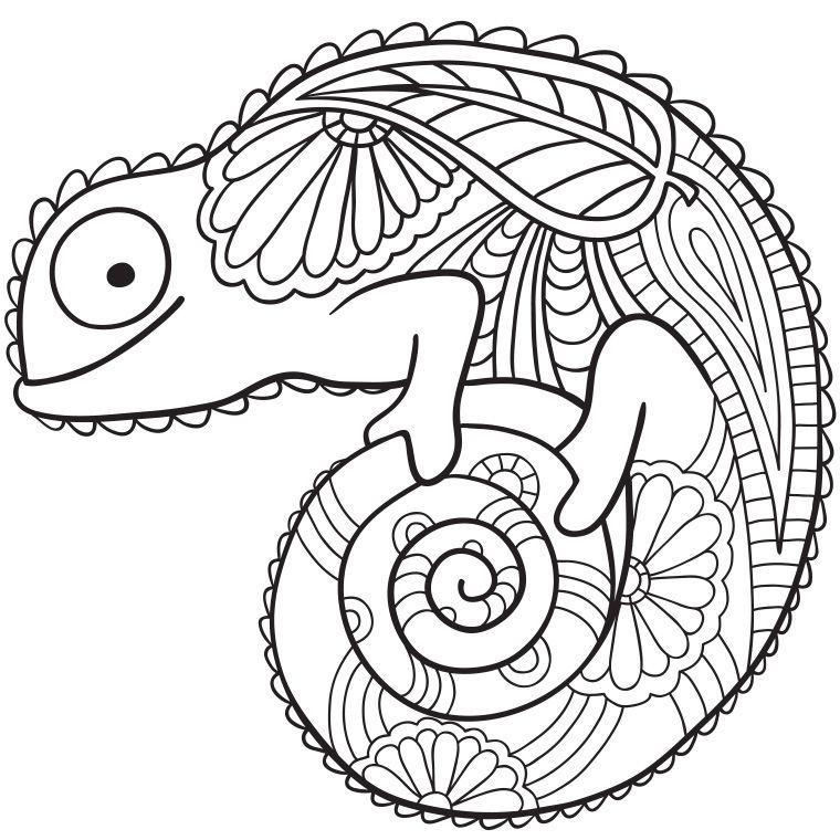 Coloriage Mandala Caméléon | Coloriage Mandala, Coloriage intérieur Coloriage Simba A Imprimer Gratuit