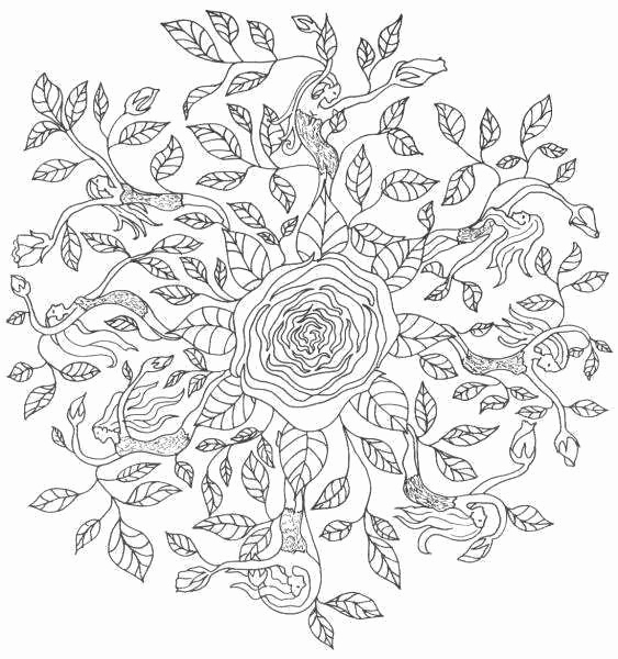 Coloriage Mandala Tres Difficile A Imprimer Frais concernant Dessin Tres Dur
