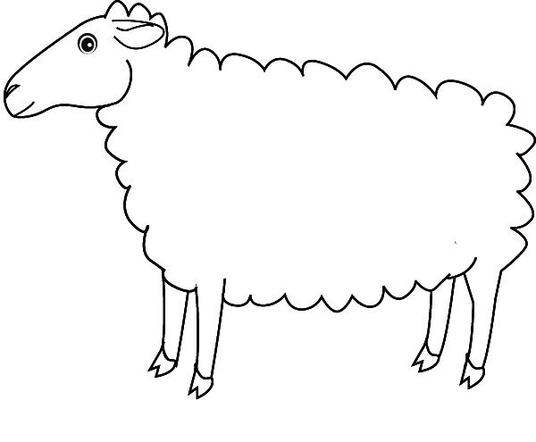 Coloriage Mouton concernant Coloriage Mouton À Imprimer