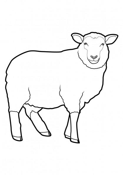 Coloriage Mouton Vecteur Dessin Gratuit À Imprimer destiné Coloriage Mouton À Imprimer