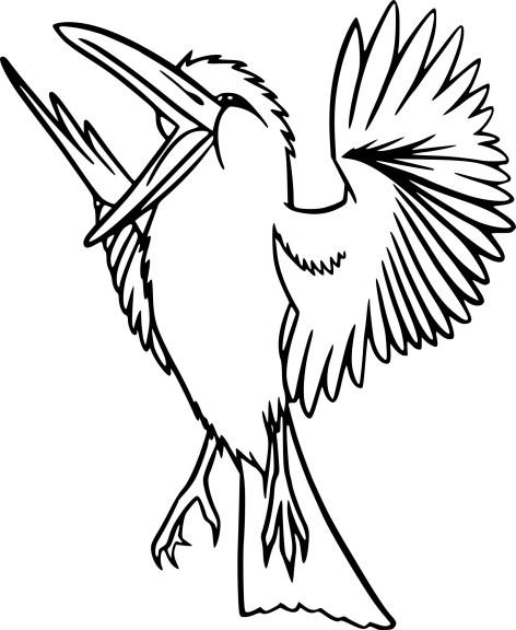 Coloriage Oiseau Exotique À Imprimer avec Coloriage De Perroquet A Imprimer Gratuit