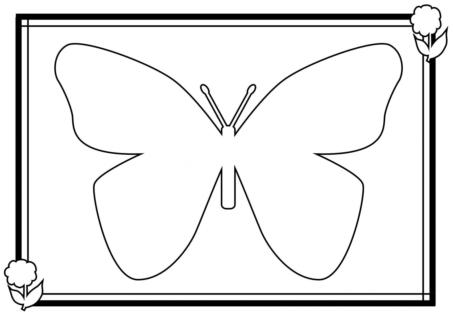 Coloriage Papillon destiné Coloriage De Papillon A Imprimer Gratuit