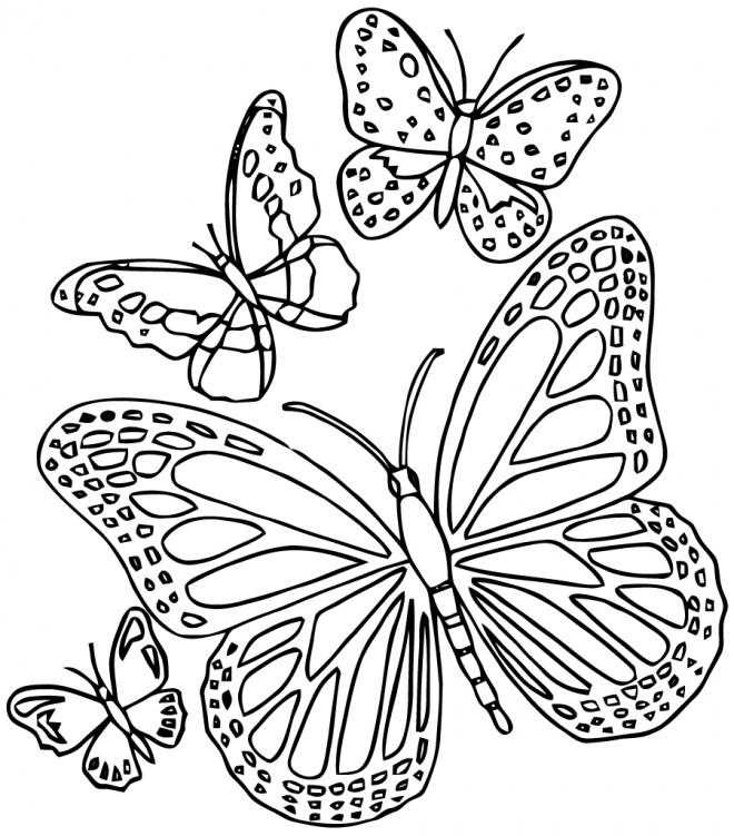 Coloriage Papillon Difficile 6 Dessin Gratuit À Imprimer serapportantà Coloriage De Papillon A Imprimer Gratuit