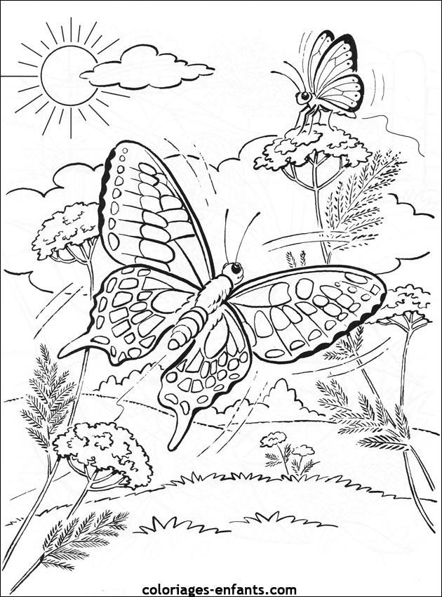 Coloriage Papillon Difficile Dans La Nature Dessin Gratuit serapportantà Coloriage A Imprimer Paysage Nature