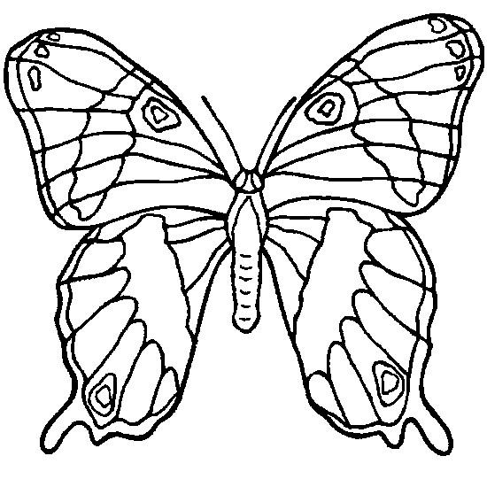 Coloriage Papillon En Ligne Dessin Gratuit À Imprimer pour Coloriage De Papillon A Imprimer Gratuit