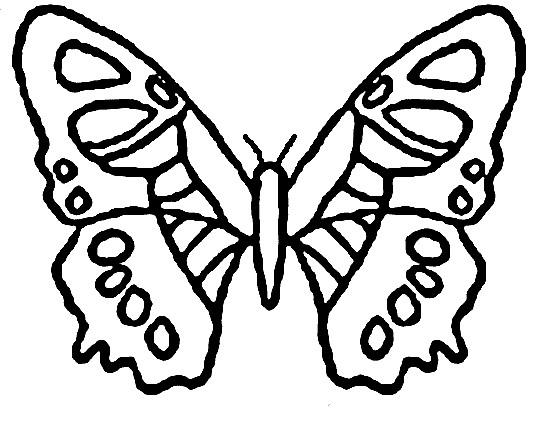 Coloriage Papillon Maternelle Vecteur Dessin Gratuit À destiné Dessin Papillon À Découper