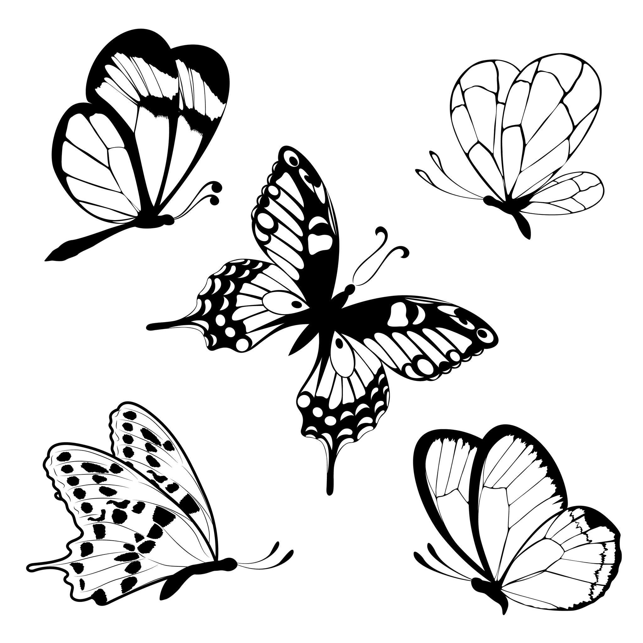 Coloriage Papillons - Facile encequiconcerne Coloriage Papillon