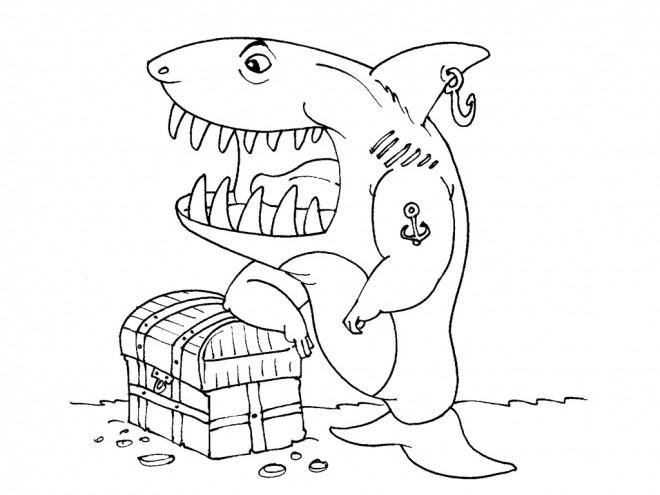 Coloriage Requin Pirate Dessin Gratuit À Imprimer serapportantà Requin A Colorier