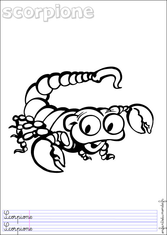 Coloriage Scorpion 1 .:. Coloriages Insectes En Italien encequiconcerne Coloriage Scorpion