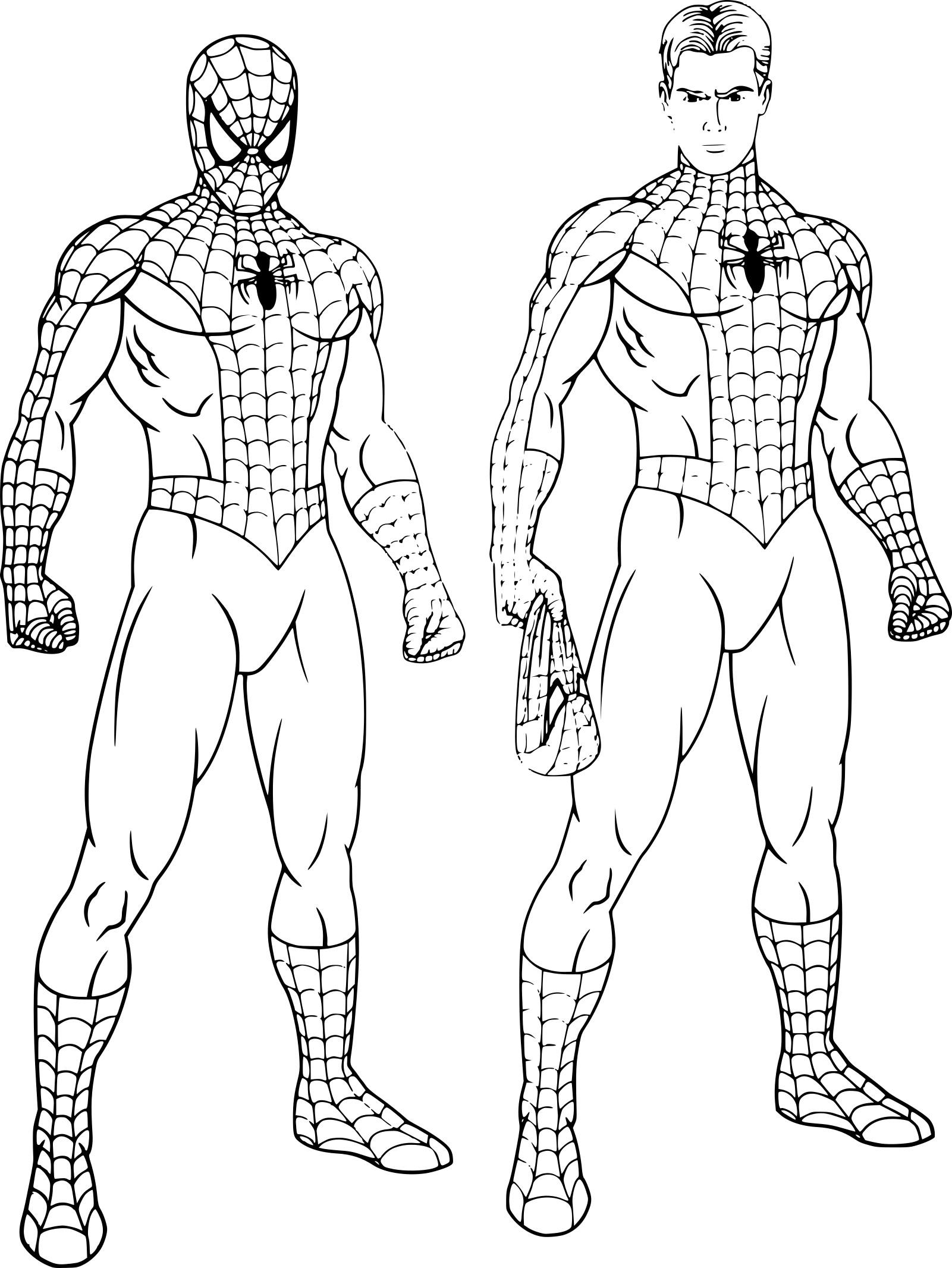 Coloriage Spiderman Peter Parker À Imprimer Sur Coloriages encequiconcerne Dessin A Imprimer Spiderman 4