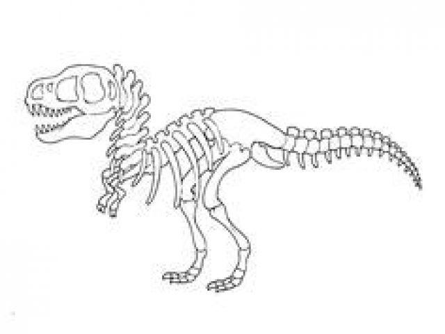 Coloriage Squelette Tyrannosaure Coloriage De Fossiles De pour Coloriage Dinosaure Tyrannosaure