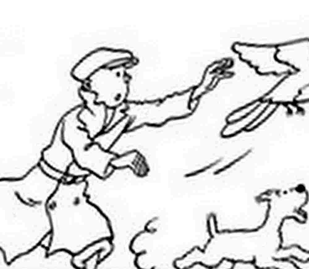 Coloriage Tintin Et Milou avec Coloriage Tintin Et Milou