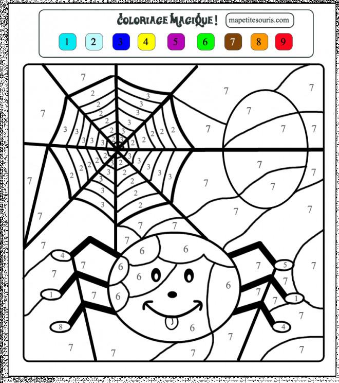 Coloriage Toile D'Araignée Dessin Gratuit À Imprimer pour Dessin Araignée Facile