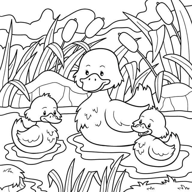 Coloriage, Un Canard Et Ses Canetons - Lulu La Taupe, Jeux serapportantà Coloriage Canard A Imprimer