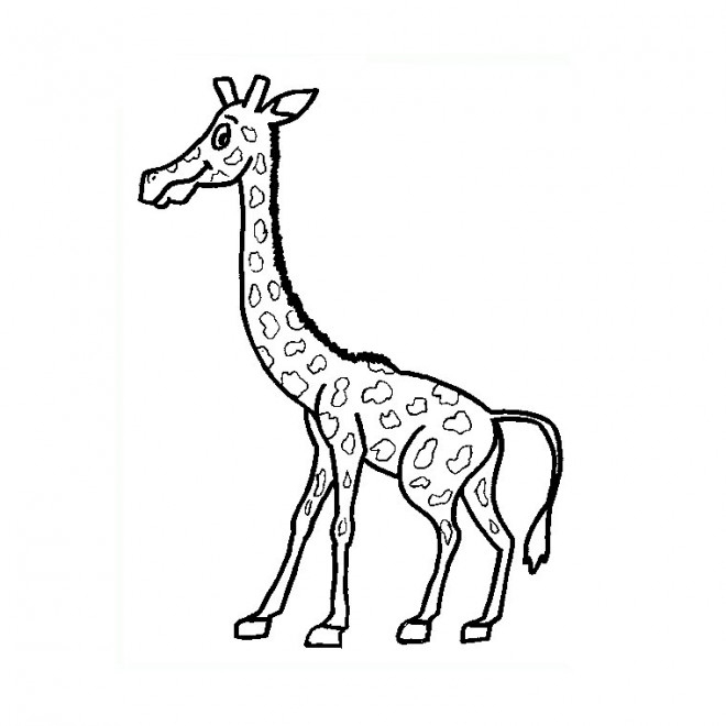 Coloriage Une Petite Girafe Dessin Gratuit À Imprimer intérieur Coloriage Girafe A Imprimer Gratuit