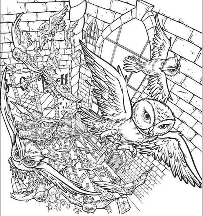 Coloriages À Imprimer Harry Potter | Coloriage Harry dedans Coloriage Harry Potter A Imprimer