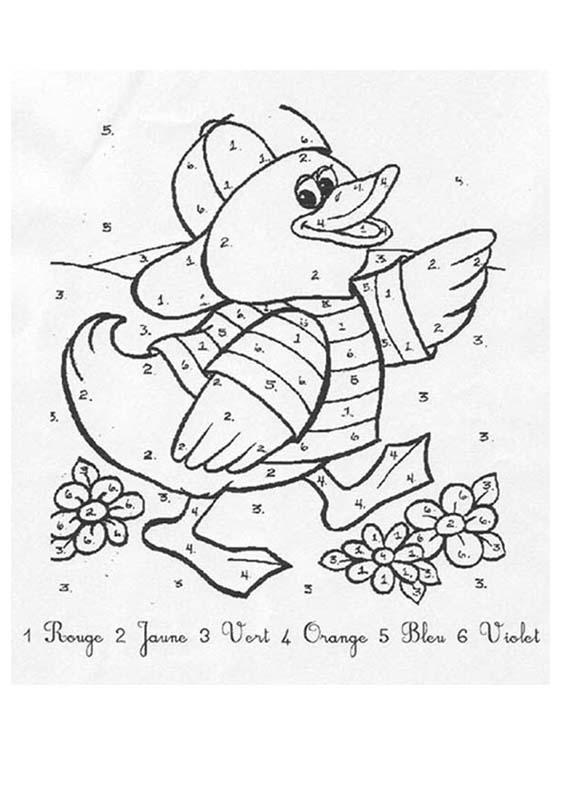 Coloriages Canard - Fr.hellokids tout Coloriage Canard A Imprimer