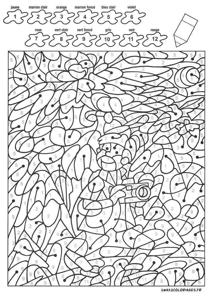 Colorier Avec Les Nombres Avec 12 Couleurs, Enzo En Safari encequiconcerne Coloriage Avec Chiffre