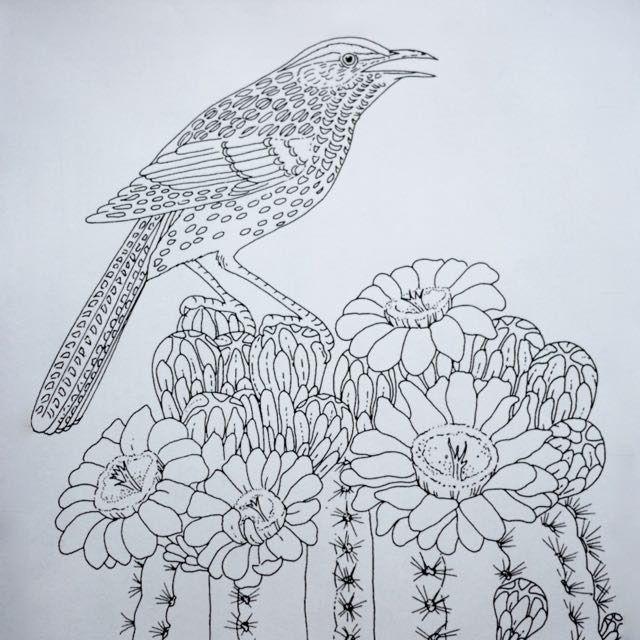 Colouring Page Painting: Cactus Wren On A Saguaro Cactus destiné Coloriage Cactus A Imprimer