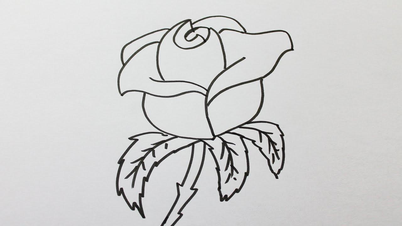 Comment Dessiner Une Rose Facilement - encequiconcerne Comment Dessiner Des Tournesols