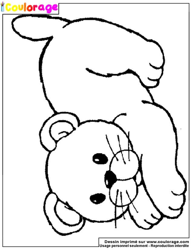Coulorage - Dessin Et Coloriage De Lion À Imprimer dedans Lion Dessin Enfant