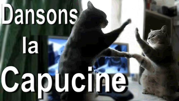 Dansons La Capucine > Pattycake Https://. dedans Danson La Capucine