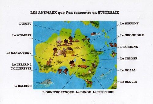Découvre Les Animaux Qui Vivent En Australie Et Apprends À destiné Dessin De Tout Les Animaux Du Monde