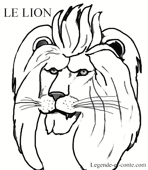 Dessin À Colorier Lionceau destiné Coloriage Lionne