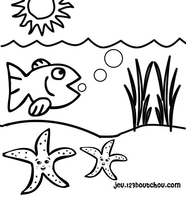 Dessin A Imprimer Etoile De Mer intérieur Coloriage Etoile De Mer