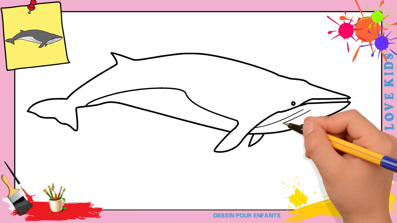 Dessin Baleine Facile - Comment Dessiner Une Baleine tout Comment Dessiner Des Tournesols