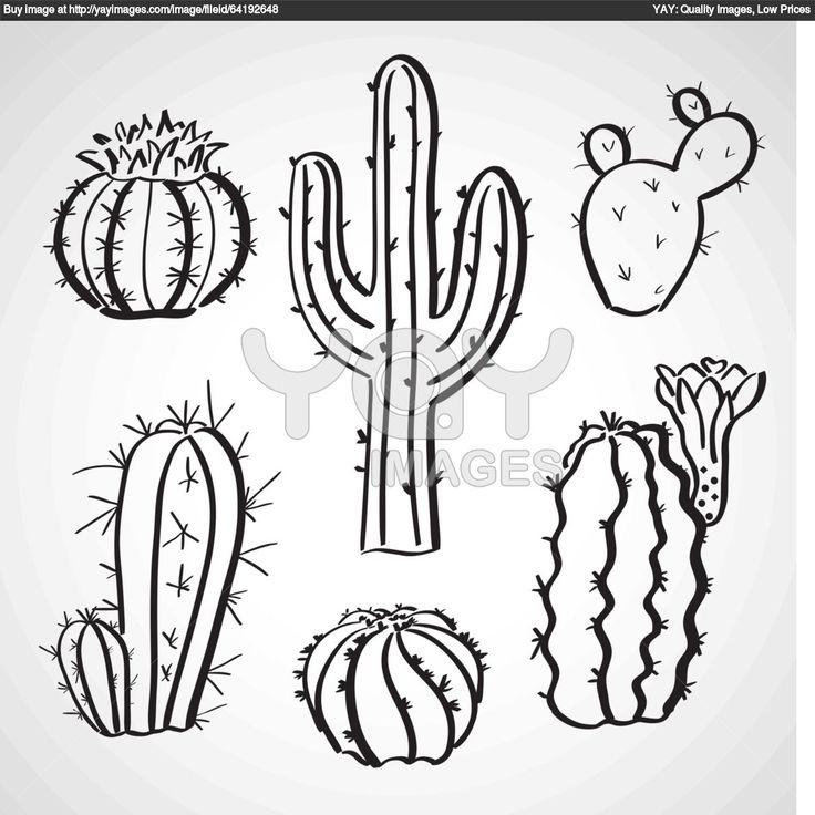 Dessin De Cactus - Dessins À Colorier - Imagixs | Cactus destiné Coloriage Cactus A Imprimer