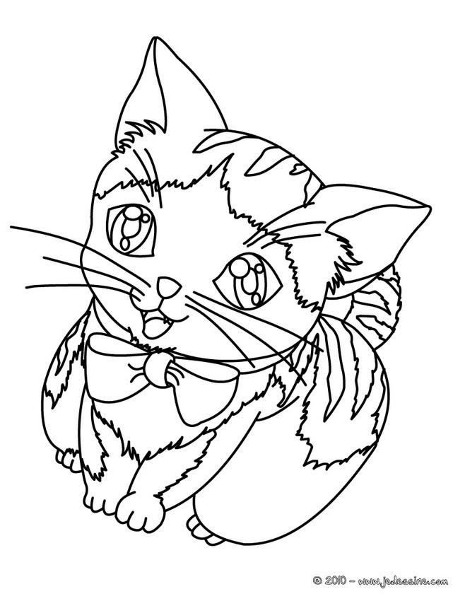 Dessin De Chat Mignon A Imprimer - Les Dessins Et Coloriage concernant Coloriage De Chat A Imprimer Gratuit