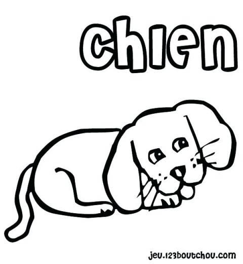 Dessin De Chien Trop Mignon Et Facile - Les Dessins Et avec Dessin Facile Chien