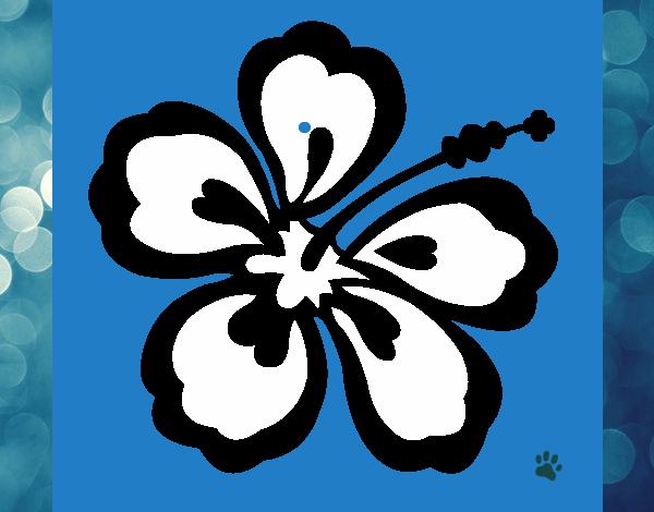 Dessin De Fleur Hawaïenne Colorie Par Membre Non Inscrit à Coloriage Hawaienne