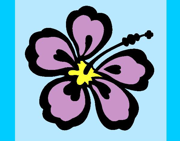 Dessin De Fleur Hawaïenne Colorie Par Titemandy Le 30 De destiné Coloriage Hawaienne