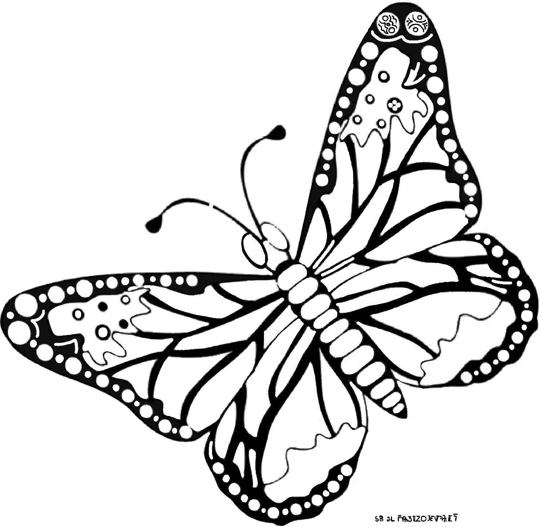 Dessin De Papillon Sur Une Fleur intérieur Dessin De Papillon En Couleur