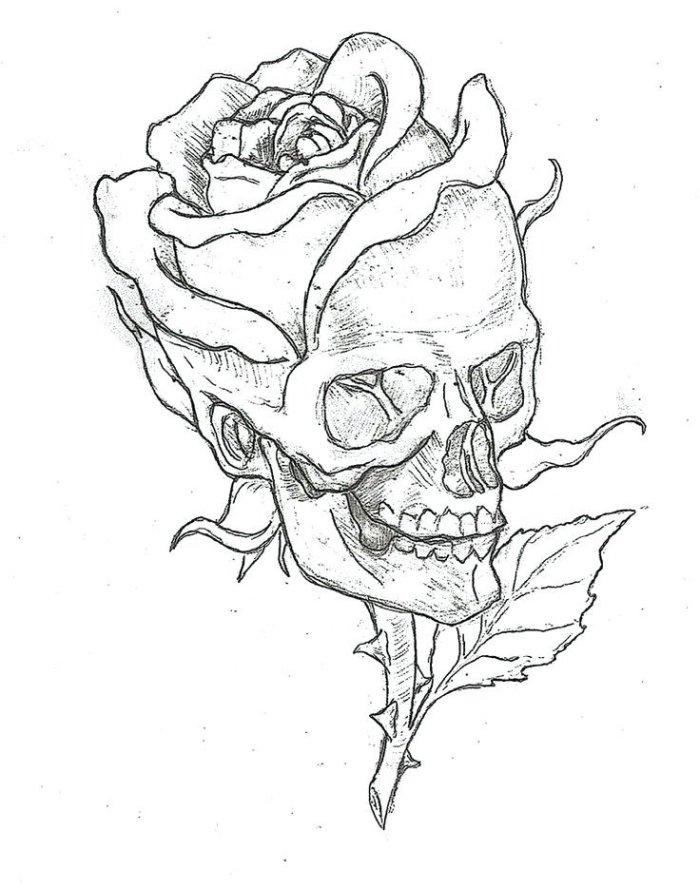 Dessin De Rose - Les Dessins Et Coloriage encequiconcerne Dessin De Rose A Imprimer