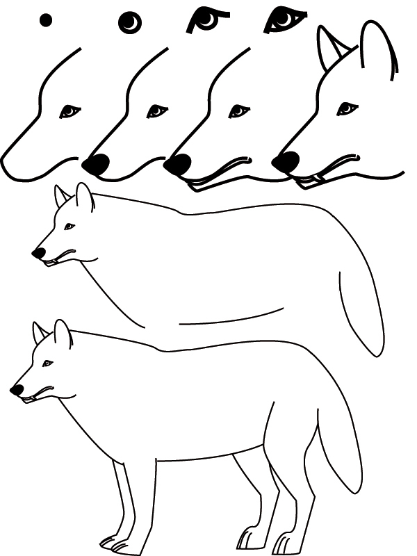 Dessin Loup à Loup Dessin Facile