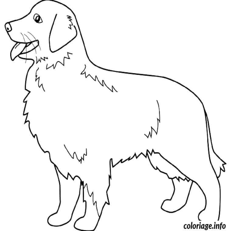 Dessin Manga Kawaii A Colorier - Les Dessins Et Coloriage tout Coloriage Labrador A Imprimer