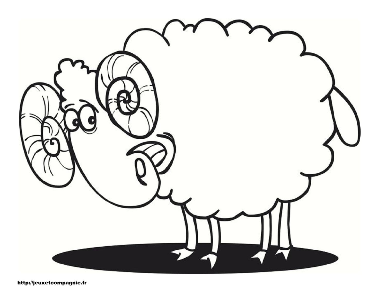Dessin Mouton Et Berger destiné Dessin De Brebis