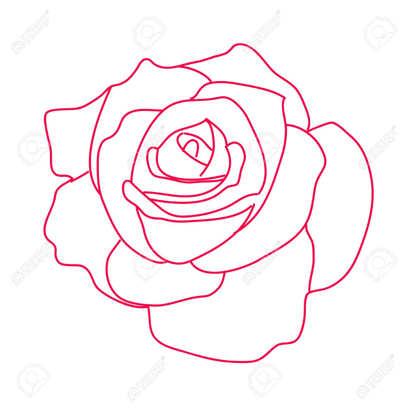 Dessin Rose Blanche - Photo De Fleur : Une Pensee Fleuriste encequiconcerne Dessin De Rose A Imprimer
