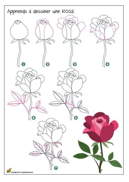 Dessiner Une Rose | Dessin Rose, Comment Apprendre A avec Rose Facile A Dessiner